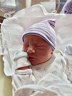 Filip Omcirk se narodil 5. listopadu ve 4:52 mamince Zdeňce a tatínkovi Vladislavovi zTachova. Po příchodu na svět vplzeňské FN vážil bráška Jakuba, Patrika a Tomáše 3240 gramů a měřil 50 cm.