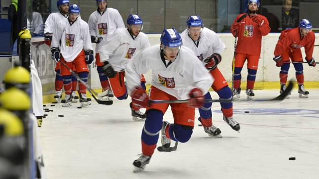 Úvodní trénink hokejové reprezentace v Plzni