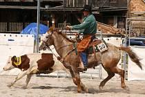 Kolem tisícovky návštěvníků přitáhlo o uplynulém víkendu pravé americké rodeo do jihoplzeňských Dnešic