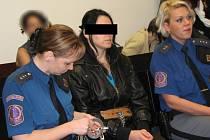 Podle nového rozsudku by měla žena za otrávení dcery fridexem jít do vězení na 20 let. Identita ženy zůstala na fotografii vzhledem k věku dítěte skryta