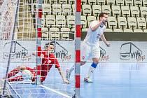 Michal Seidler (v bílém) slaví svůj gól, kterým snížil na 1:2. Češi remizovali s Polskem 3:3.