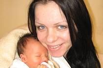 Danielka Svěráková z Lomu u Tachova (2,50 kg/45 cm), která se narodila 5. února v 11.35 hod. ve Stodské nemocnici je prvorozenou dcerou rodičů Kristýny a Zdeňka