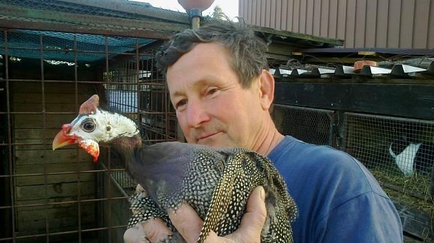 Emil Mundl s jednou ze svých perliček. Jejich vajíčka mají oproti těm slepičím pevnější skořápku a vydrží několik měsíců