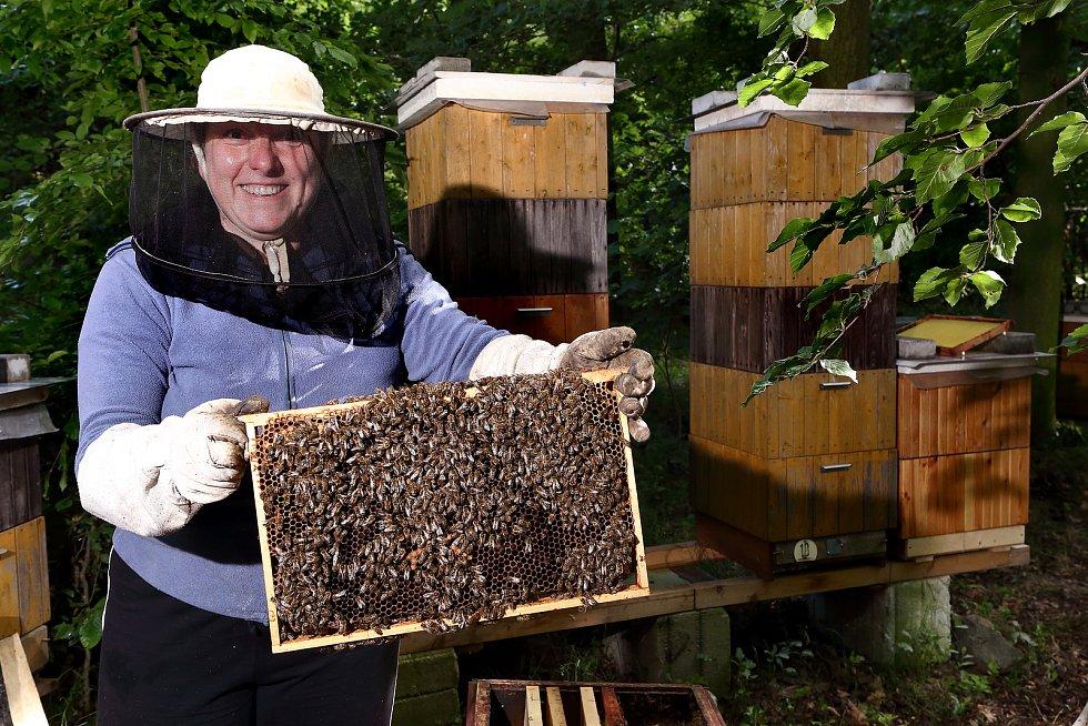 19 - Běžně včelaří i ženy, i když v menšině.