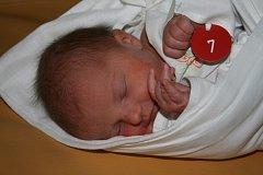 V Mulačově nemocnici se 11. ledna v 15:45  rodičům Evě a Pavlu Holým z Plzně narodila Kristýna (2,90 kg, 48 cm). Doma již mají jednu dceru, čtyřletou Barborku