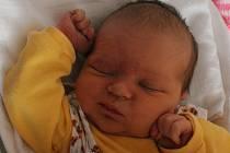 Prvorozenou dceru Elišku (3,62 kg, 51 cm) přivítali na světě rodiče Petra a Jan Tolarovi z Přeštic. Eliška se narodila 14. března ve 21:12 ve Fakultní nemocnici v Plzni