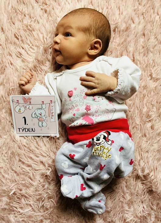 Andrea Hodanová z Klatov se narodila v klatovské porodnici 23. února v 7:47 hodin (3100 g, 50 cm) rodičům Lucii a Alešovi. Na malou sestřičku se těšila pětiletá Eliška.