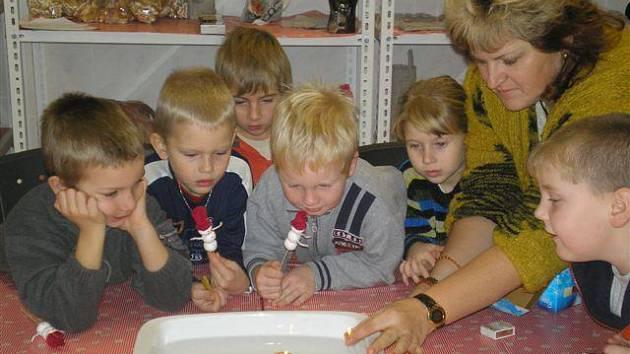 V Domě dětí a mládeže Radovánek v Žihli pouštěly děti i lodičky z ořechových skořápek