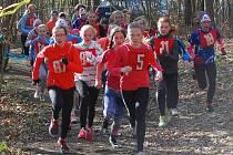 Lesní kros na tratích u Radčic láká  stále početnější pole běžců. Na snímku z loňska absolvují svůj závod mladší žačky