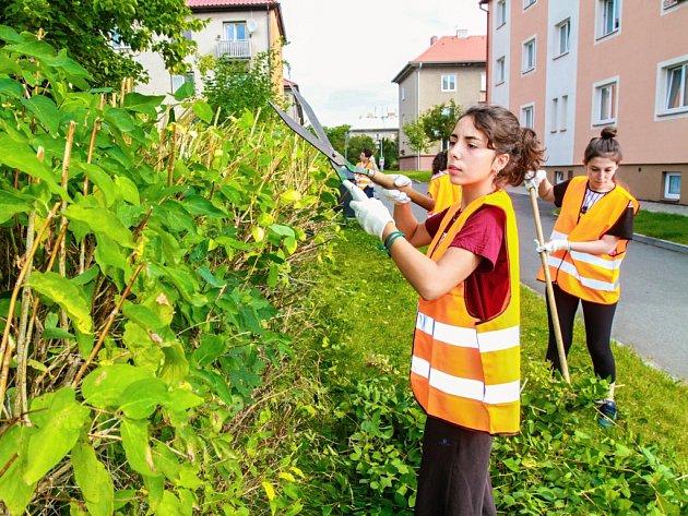 Dobrovolníci z celého světa zkrášlovali v úterý zeleň u domu s pečovatelskou službou v Dýšině.