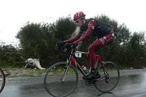 Přes sto kilometrů  v úniku jel  sparťan  Michal Kesl během druhé etapy závodu  Krajem krále Nikoly,v závěru  dějství  však byl  soupeři dostižen