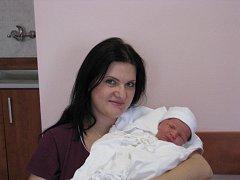 František (3,74 kg, 52 cm) se narodil 29. ledna v 0:24 ve Fakultní nemocnici v Plzni. Na světě jej přivítali rodiče Janina a František Trojanovi z Toužimi a sestřička Tina (3 roky a 3 měsíce)