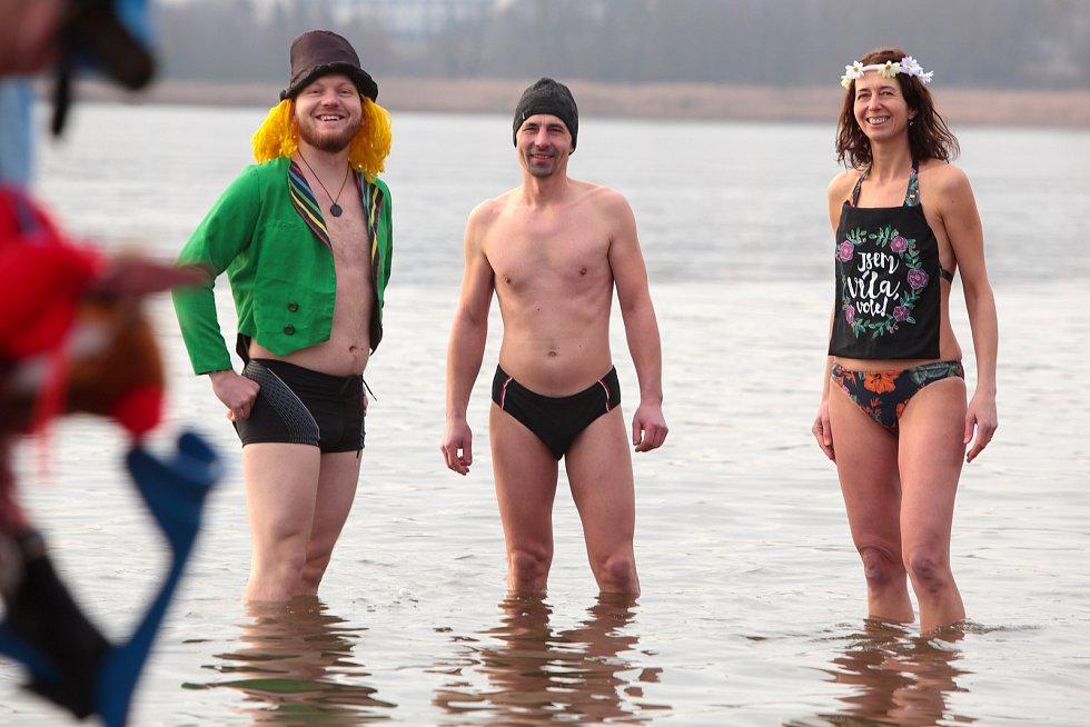 Novoroční koupel otužilců na Velkém boleveckém rybníku v Plzni.