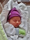 Pavel Král se narodil 31. července v 11:01 mamince Martině a tatínkovi Pavlovi z Holýšova. Po příchodu na svět ve FN vážil bráška tříleté Martinky 2930 gramů a měřil 48 centimetrů