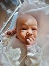 Jan Kopecký se narodil 2. listopadu ve 12:45 mamince Janě a tatínkovi Robertovi zPlzně. Po příchodu na svět doma vážil bráška Jakuba a Zuzanky 4000 gramů a měřil 51 cm.