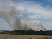 Požár pole a lesa u Horního Hradiště a severním Plzeňsku