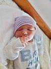 Adam Vodička se narodil 5. května v18:42 mamince Kateřině a tatínkovi Lukášovi zPlzně. Po příchodu na svět vplzeňské FN vážil bráška jedenáctiměsíčního Šimona 3230 gramů a měřil 48 centimetrů.