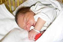 Nicole Nelly Višňovská (3,30 kg, 50 cm) se narodila 28. února kolem osmé hodiny večer vMulačově nemocnici. Znarození svojí prvorozené dcery má maminka Nikola Višňovská a tatínek Martin Florian zPlzně