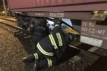 Policisté společně s hasiči kontrolovali všechny kontejnery nákladní soupravy, zda se ve vytipovaných místech nenachází nelegální pasažéři, zda není narušen povrch či plomby kontejnerů.