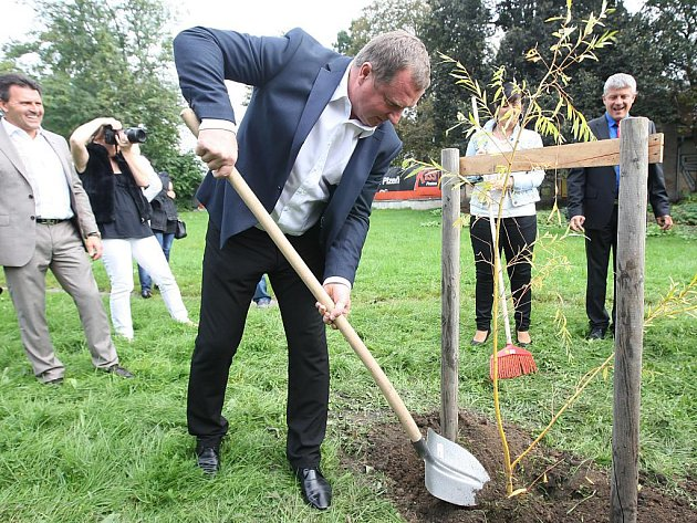 Pavel Vrba zasadil ve Štruncových sadech v Plzni vrbu bílou