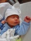 Antonín Jiří Šolc se narodil 17. července mamince Luďce a tatínkovi Romanovi z Plzně. Po příchodu na svět ve FN vážil bráška tříleté Johanky 3120 gramů a měřil 50 centimetrů