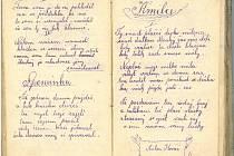 Deník Antonína Kováře z první světové války je plný veršů o lásce, o válce, ale i o domově. Je z něj poznat, že se mu v daleké cizině opravdu stýskalo. Až do letoška o Kovářových zápiscích rodina nevěděla