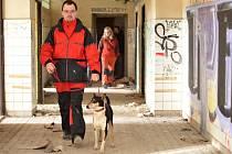 V lázních cvičí psí záchranáři.