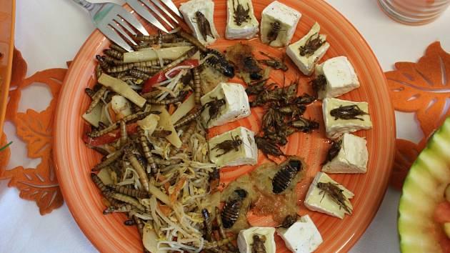 Žáci Základní školy speciální v Merklíně vymýšleli, vařili i prostírali