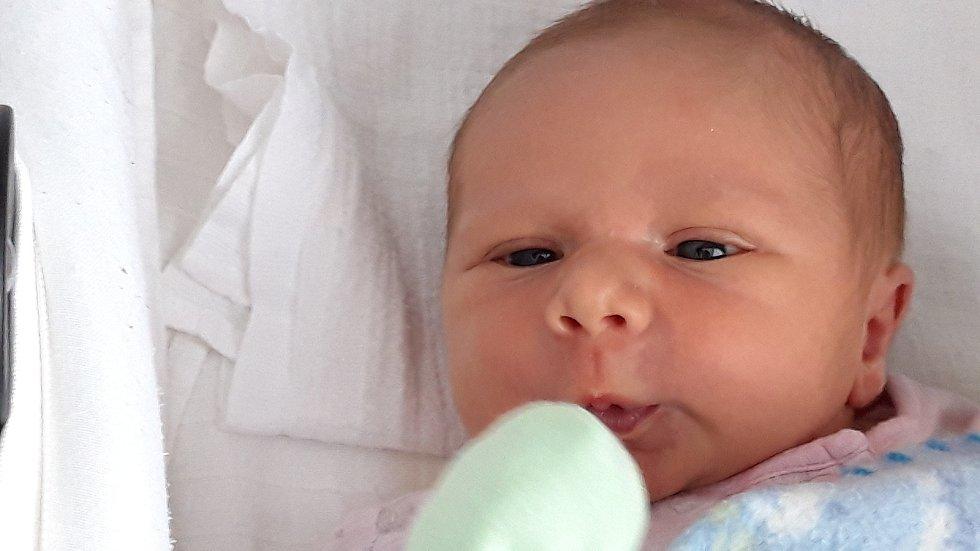 Vašík Dums z Tajanova se narodil v klatovské porodnici 21. dubna v 17:40 hodin (3750 g, 52 cm). Rodiče Petra a Jaroslav dopředu věděli, že budou mít chlapečka a tatínek si nenechal ujít příležitost být u synova příchodu na svět. Na miminko se těší i téměř