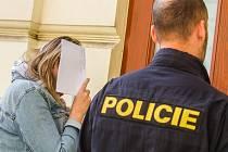 Policie vede ženu, která hrozila v Plzni výbuchem bomby, k Okresnímu soudu Plzeň-město