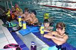 Od dnešního dne jsou opět otevřeny pro veřejnost i sportovce vnitřní i venkovní bazény. Na snímku plavci domácího oddílu Slavia VŠ.