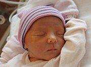 Zdeňka Hornsteinerová se narodila 3. srpna ve 22:45 mamince Zdeně a tatínkovi Lukášovi z Nekmíře. Po narození ve Fakultní nemocnici v Plzni vážila prvorozená dcerka 2950 gramů a měřila 47 centimetrů.