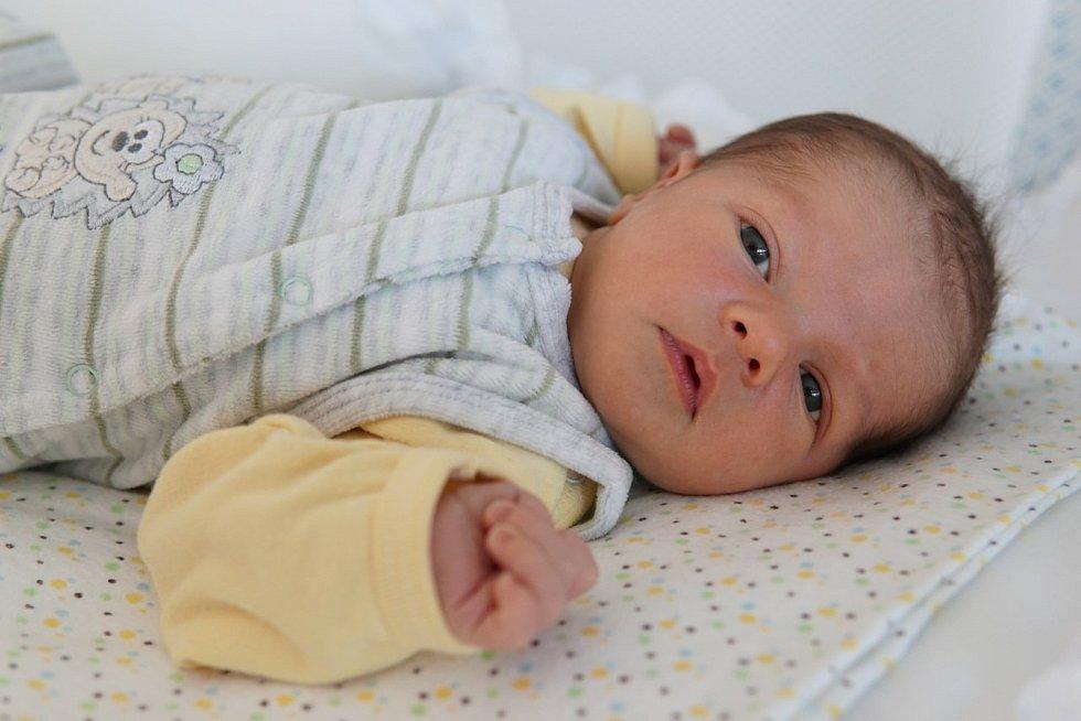Michal Tietz z Kyšic se narodil 4. ledna v 10:30 hodin  (3400 g, 53 cm) ve FN v Plzni rodičům Haně a Josefovi. Doma malého bratříčka přivítal osmiletý Tomášek.