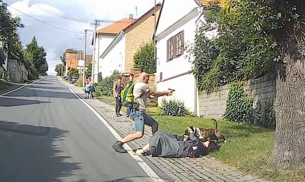 Napadení stafordem v Nebílovech