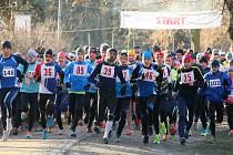 Posledního závodu roku 2015 se v Plzni zúčastnilo víc než 130 běžců.  Na snímku vlevo běží pozdější medailisté (zleva) třetí Vlastimil Šroubek, vítěz Přemysl Švarc a druhý Tomáš Plojhar