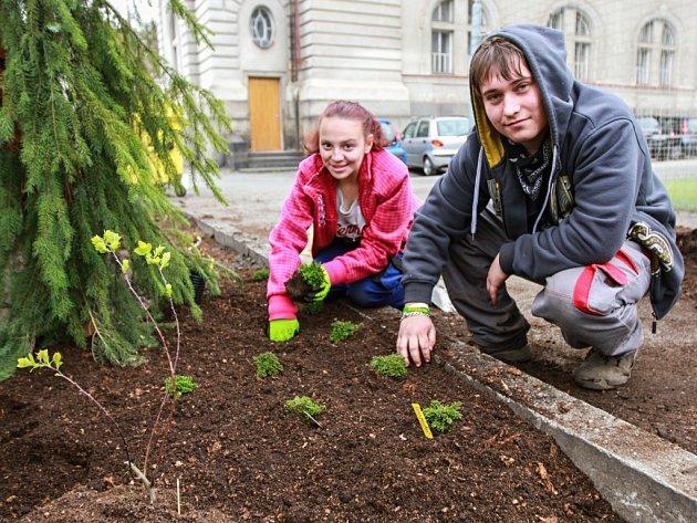 S přípravami naučné stezky pomáhají také studenti, kteří studují zahradničinu.