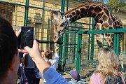 Zvířecí sobota v plzeňské zoo.