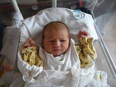 Prvorozený Aleš (3,75 kg, 53 cm) přišel na svět 20. září v 6:29 v plzeňské fakultní nemocnici. Z narození svého prvního syna se radují maminka Ivana a tatínek Aleš Jílkovi z Plzně-Křimic