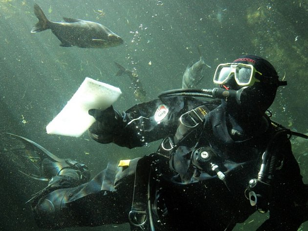 Čištění akvárií České řeky v plzeňské zoo
