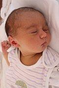 Rodiče Lenka a Zbyněk Vodičkovi z Plzně se radují z narození Zuzanky (3,42 kg, 51 cm). Jejich prvorozená dcera přišla na svět 26. srpna v 19:36 v plzeňské fakultní nemocnici