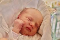 Viktorie Laštovková se narodila 28. dubna před půlnocí mamince Lucii a tatínkovi Jiřímu z Blovic. Po příchodu na svět v rokycanské porodnici vážila sestřička tříleté Lilianky 2900 gramů a měřila 50 centimetrů