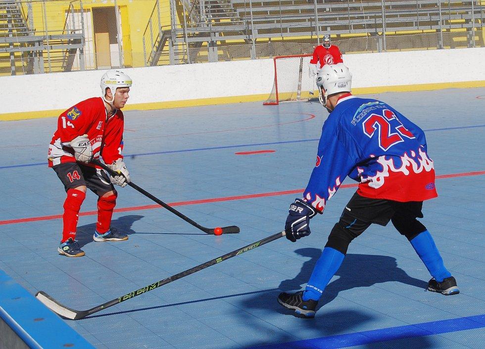 Hokejbal Litice - Jindřichův Hradec