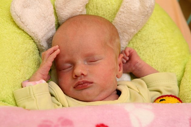 VPlzni se narodila trojčátka. Ella, Emma a Anna Kohoutovy.