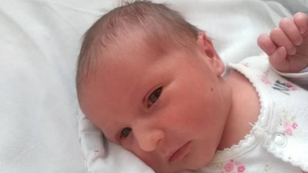 Markéta Trefancová z Janovic nad Úhlavou se narodila v klatovské porodnici 16. března v 7:45 hodin (2910 g, 49 cm). Rodiče Zuzana a Antonín věděli dopředu, že jejich druhorozeným miminkem bude holčička. Z miminka má radost i její starší sestřička Kristýnk