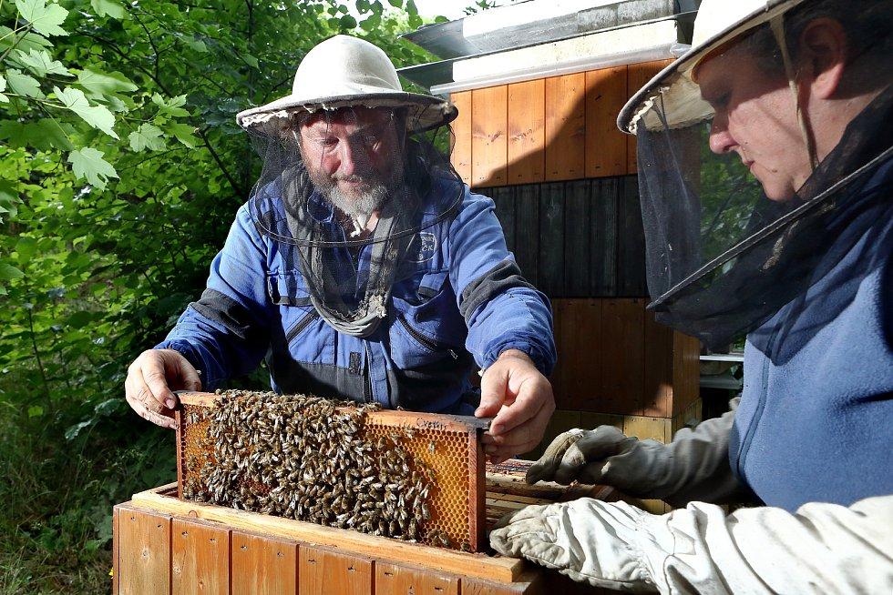 15 - Při medobraní se velikost úlu zmenšuje.