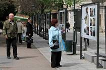 Ke stému výročí založení 2. pěší divize US Army (1917 - 2017) uspořádalo město, v rámci Slavností Svobody 2017, výstavu fotografií ve Smetanových sadech v prostoru U Branky.