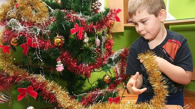 Honzík Berka z Lobez pomáhá odstrojovat vánoční stromeček, atmosféra vánočních svátků tím definitivně končí.  Plzeňské stromky  zase skončí většinou v teplárenských kotlích.