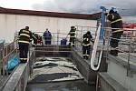 Likvidace ropných látek v čističce odpadních vod v Plzni.