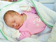 Lucie Horová z Myslíva (3700 g) se narodila ve strakonické porodnici 21. prosince v 9:13 hodin rodičům Petře a Josefovi. Doma na ni čeká bratr Petr (9).