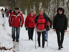 Účastníci novoročního špacíru kolem Zelené Hory směřují do Borkovského lesa